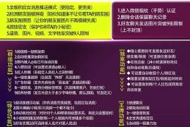 微商奇迹5.0/6.0诺亚方舟7.0微信自动收账正版网站下载地址授权激活码