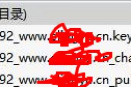【记录有用】ssl---阿里云的public.crt和chain.crt的证书怎么弄