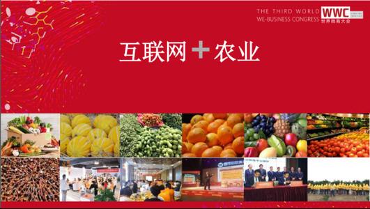 """双峰县举办微商沙龙探讨农业大县""""互联网+农业"""